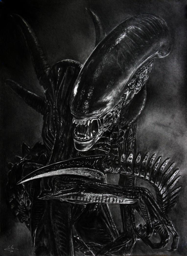 New Alien movie on the way   Alien