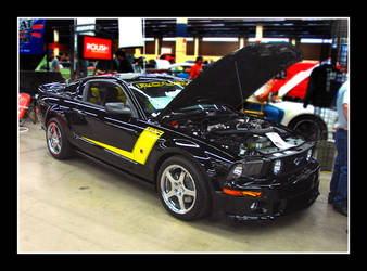 Roush Stang by sandwedge