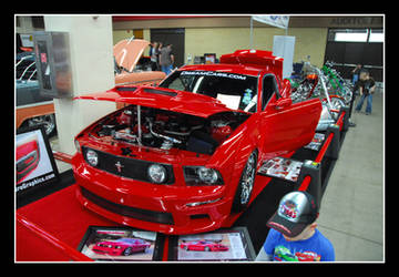 Large Red Stang by sandwedge