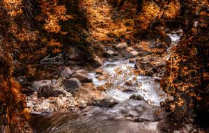 Fall by seth2012chaos