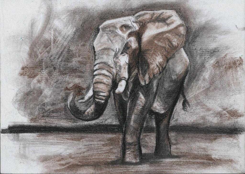 Elephant by IsabelleWallgren