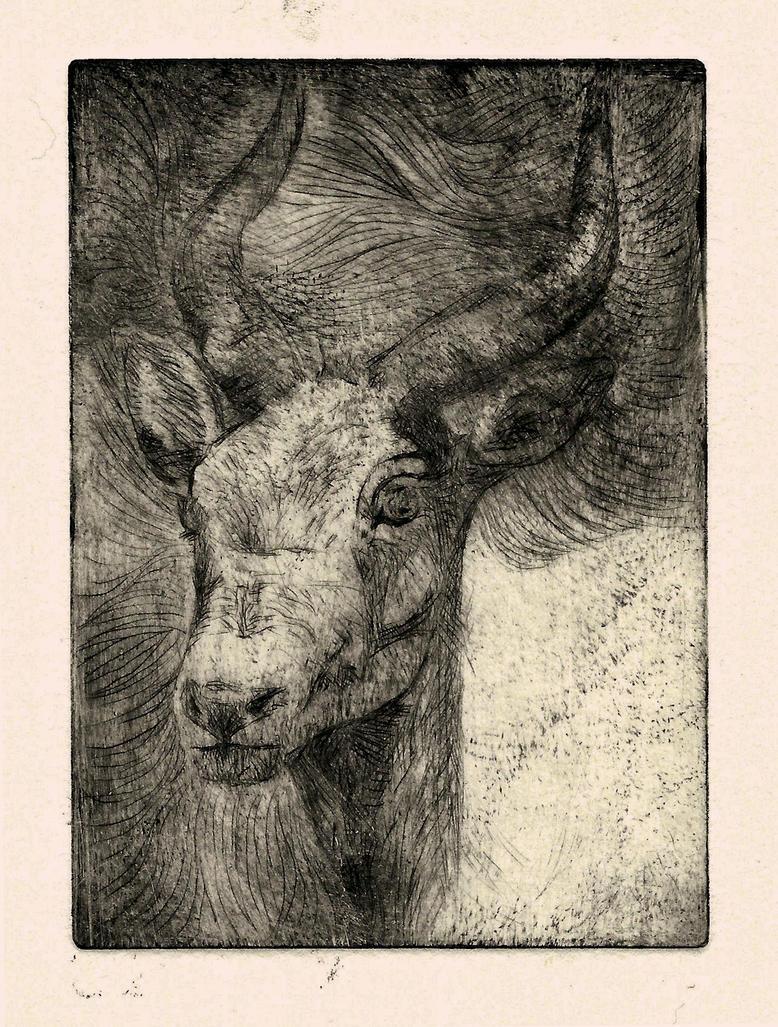 Antelope print by IsabelleWallgren