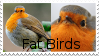 Fat Birds Stamp by Doctor-Axel