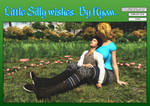 Little silly Wishes. Cover.