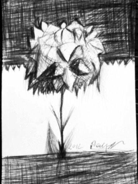 Black and White Flower by mannicken