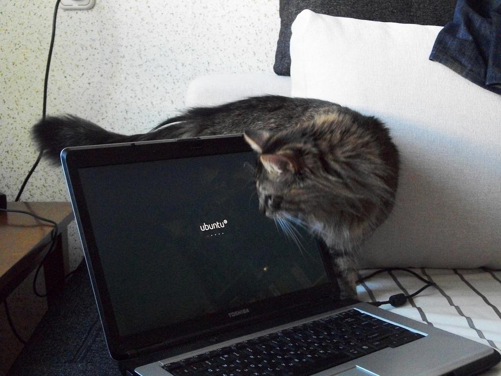 OMG Ubuntu by irider89