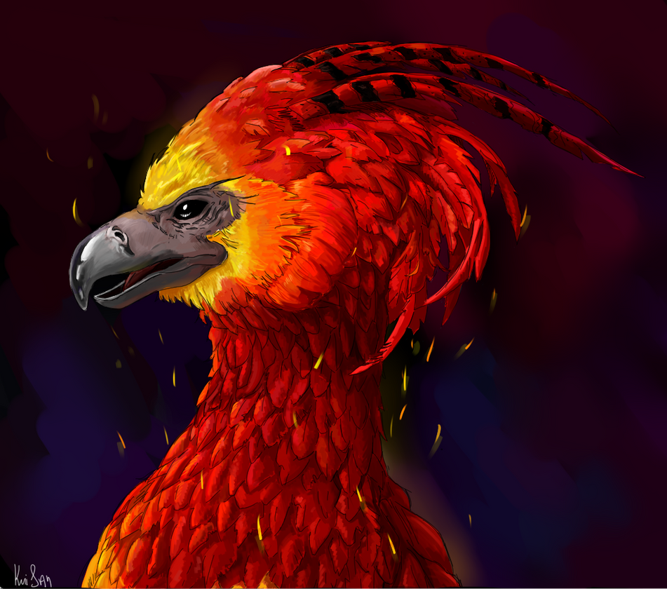 Fawkes, Harry Potter by Viconbecon on DeviantArt