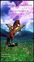 Supernatural Quarter Horses