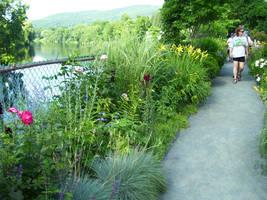 Garden Walkway Stock2