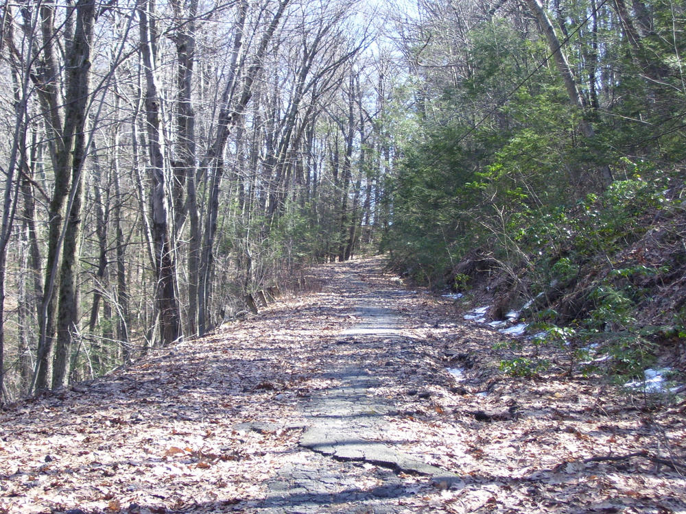 Abandoned Reserve Road 2