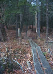 Fall Log Bridge