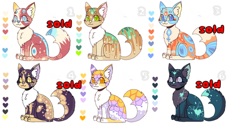 cat open adoptable ( 2 / 6 )