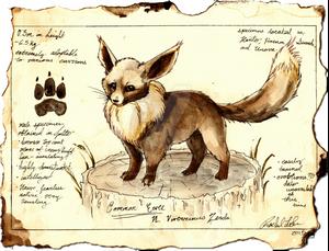(Gift) Prof. Corey's Field Guide to Pokemon: Eevee
