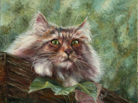 Cat on the roof (oil)