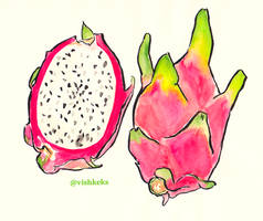 Dragon fruit by VishKeks