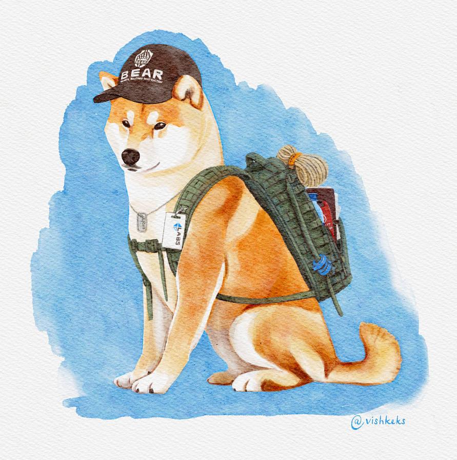 Escape from Tarkov doge
