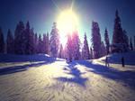 snow eden 2