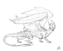 Dragon lineart by SamuraiDragon
