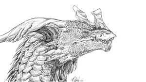 Dhredd - Sketch