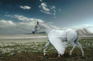 Twilight Swan by Dawndance
