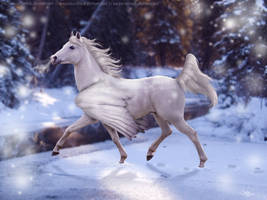 Snow Bringer by Dawndance