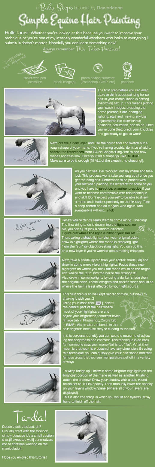 Simple Equine Hair Painting by Dawndance