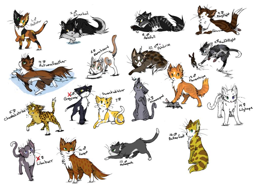 Human Cat Names Female