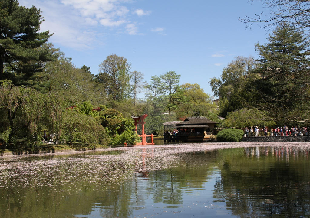 Japanese garden gate by elbarto252 on deviantart for Japanese garden gate