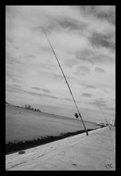 Dia de Pesca by josexavier