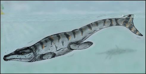 Plesiosuchus manselii