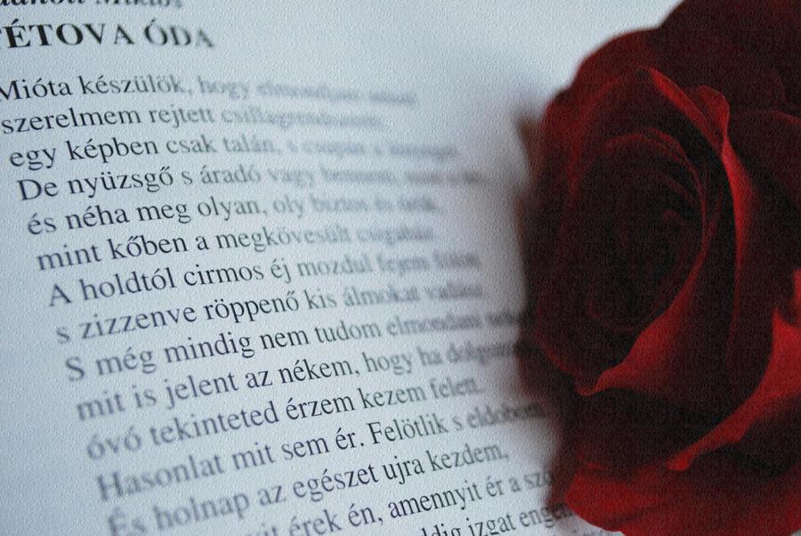 Miklos Radnoti Poems a Beautiful Poem by Miklos Radnoti by Chloeglam
