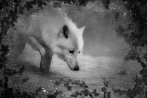 the white wolf by CrumblingLand