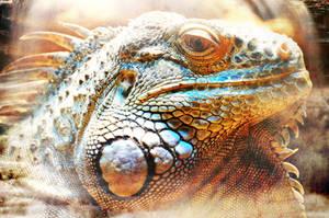 der Leguan by CrumblingLand