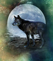 Luna by CrumblingLand