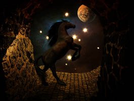 Nachttanzer by CrumblingLand