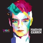 Martin Garrix WPAP