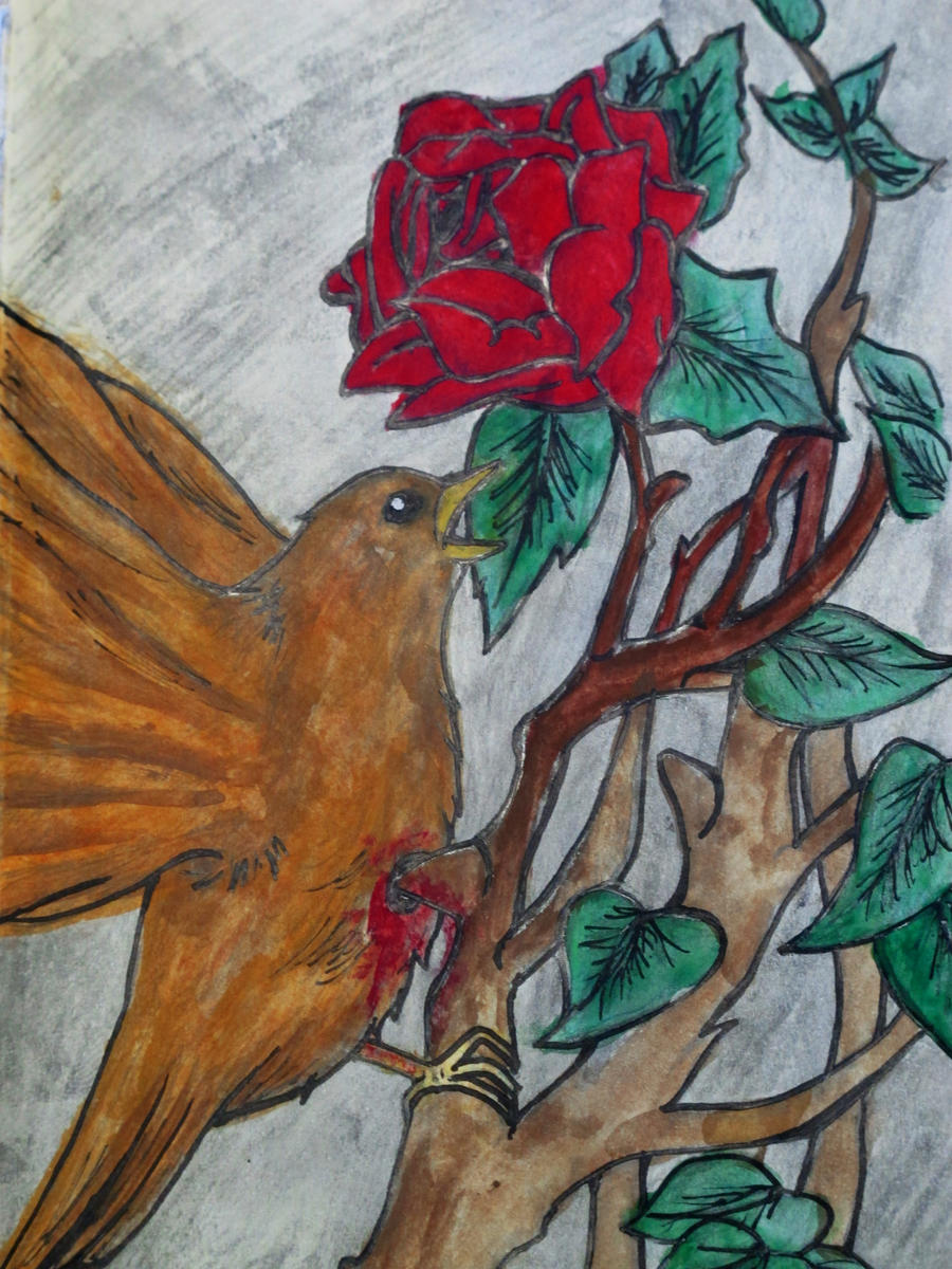 The Nightingale and the Rose by avidel94 on DeviantArt
