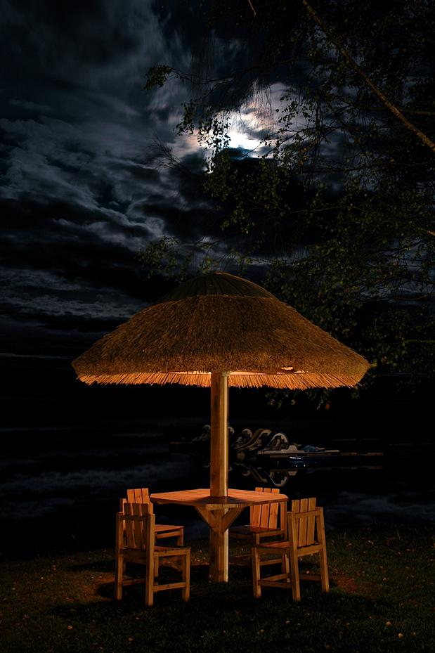 Shroomy Lakeside by menca