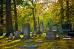 Graveyard Stock 002