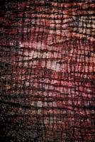 Zombie Victim Texture Stock by redwolf518stock