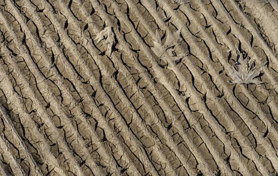 Muddy Texture Stock