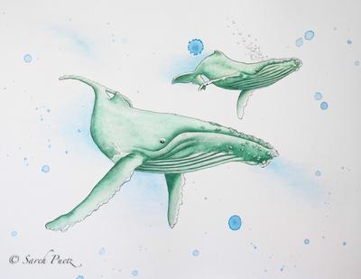 Humpback and Calf by Sarehlisa