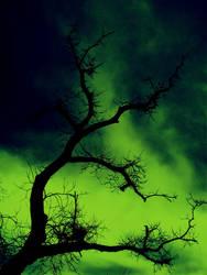 Radioactive Skies