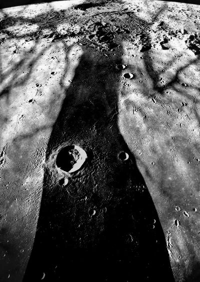 arbor luna by Kellerfee
