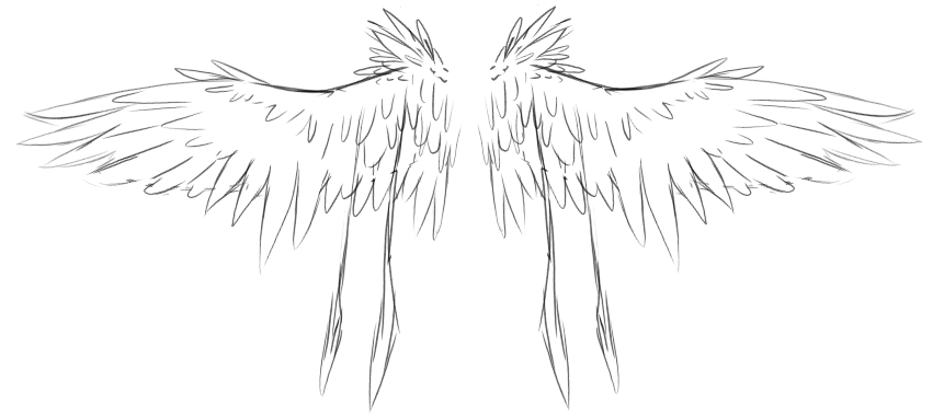 Velciptras Wings by DarkOverlord13
