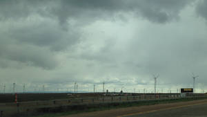 Fields For Don Quixote
