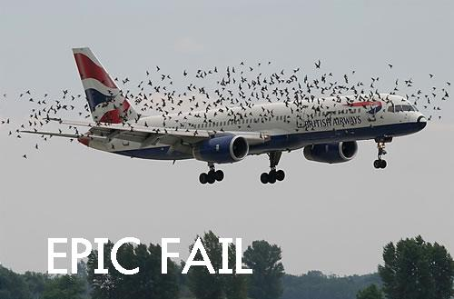 EPIC FAIL by gingagirl95
