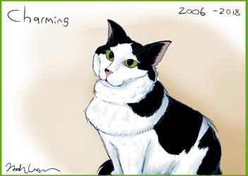 My Dear Cat by SailorSealGarri