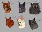 Warrior cats by WarriorsFanClubCats