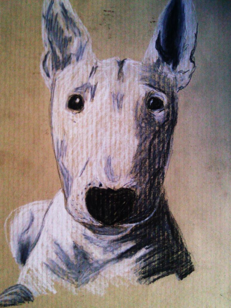 bull terrier by Arteha